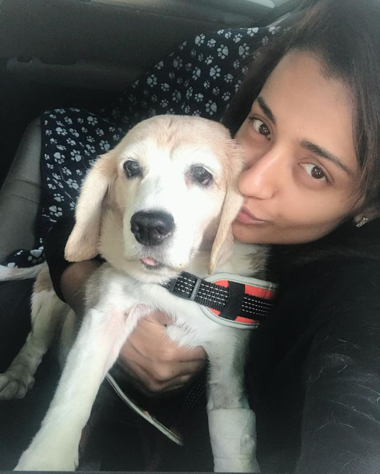 Trisha Krishnan hd image with pet