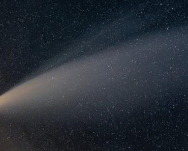 neowise comet tracker app